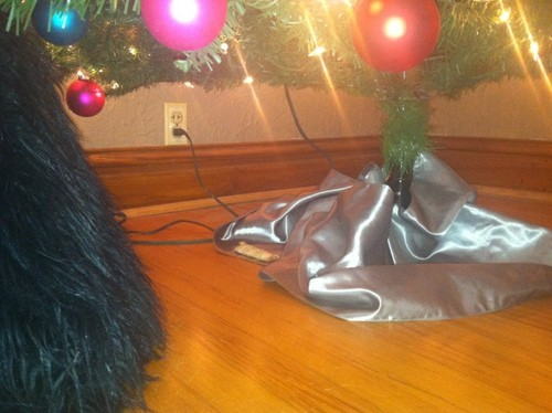 Can you spot Caper's gift?