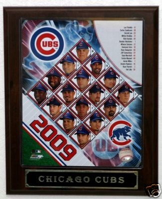 2009chicagocubsteamplaque.JPG