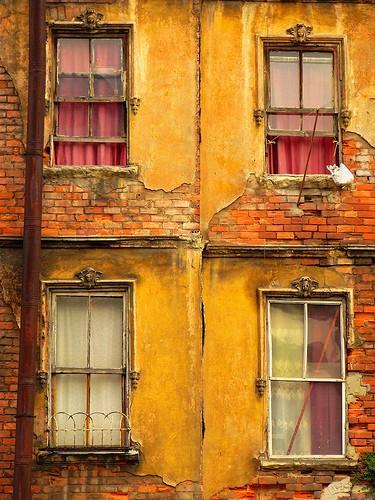 A view to kill. - FLICKR.COM/PHOTOS/ROBINO