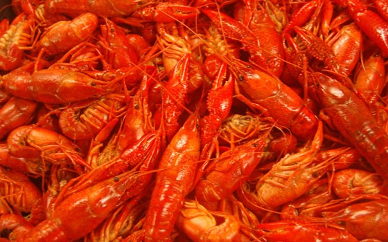 Broadway Oyster Bar is flying in over 1,000 of fresh Louisiana crawfish. | Food Group