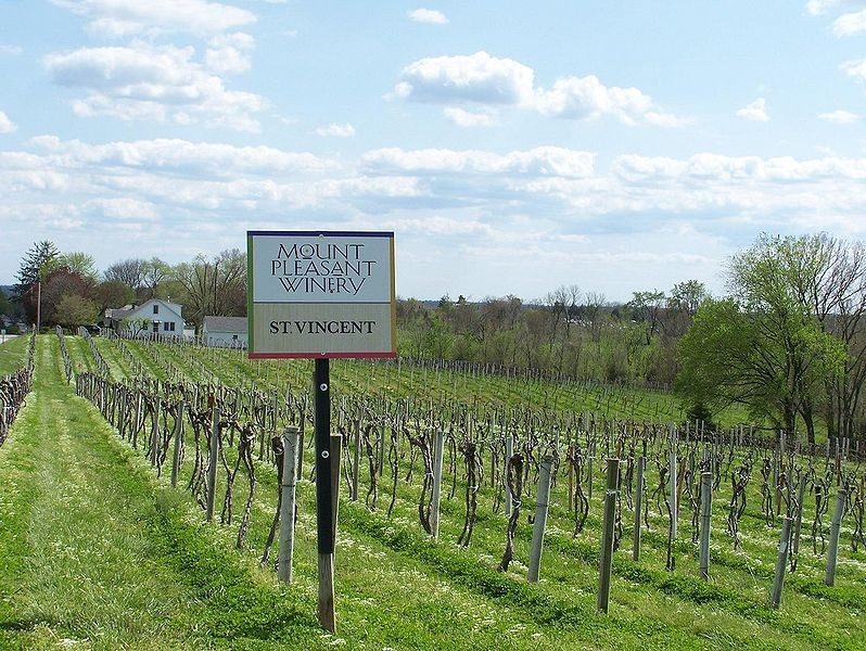 "The Noble Writ hopes to drink and visit Missouri wines. - USER ""AGNE27,"" WIKIMEDIA COMMONS"