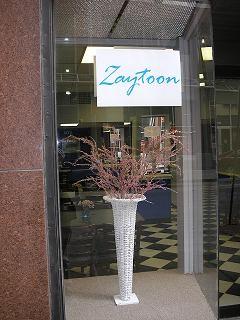 zayoon.jpg