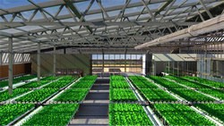Another greenhouse rendering. - BRIGHTFARMS