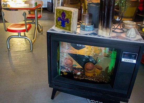 Fishy TV.