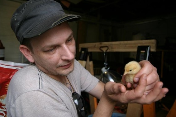 Kris Janik holding one of his chicks. - PHOTO BY NICHOLAS PHILLIPS
