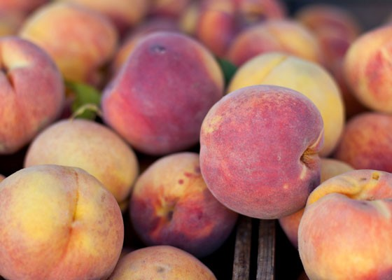 Peaches! | Neil Conway