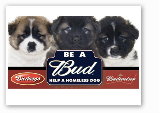 Be a Bud helps super cute dogs. And even not cute ones. | Dierbergs