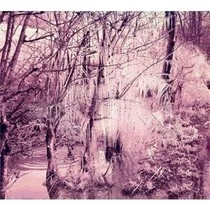 Esben & The Witch's Violet Cries