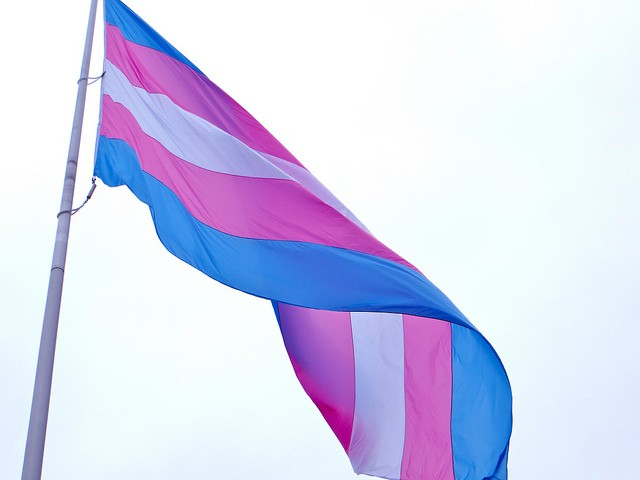 The transgender flag will be raised at St. Louis City Hall. - PHOTO COURTESY OF FLICKR/TORBAKHOPPER