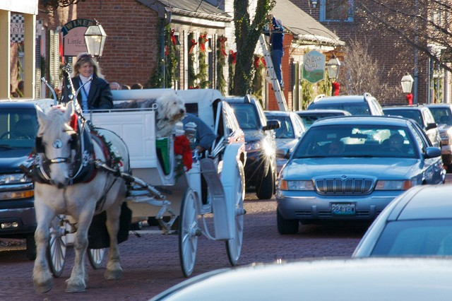 Carriage horses, like the one shown above, are a common sight in St. Charles. - PHOTO COURTESY OF FLICKR/JEFF SLATER