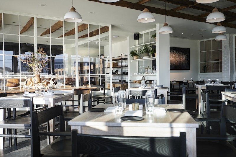 Vicia is now open in cortex — and it s simply stunning