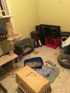 A room in the home of KKK leader Frank Ancona is filled with litter boxes.