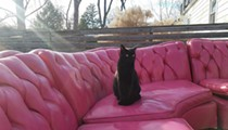 Here's the Story Behind That Vintage Hot Pink Sofa Everyone in St. Louis Wanted