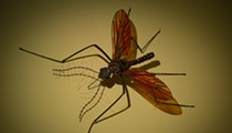 West Nile Virus Found in Jefferson County Mosquitos