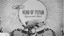 Head of Femur