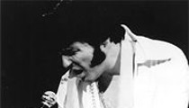 Memories of Elvis / Thomas Hickey
