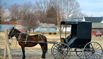 91-Year-Old Man Dies After Being Run Over by Amish Horse-Drawn Cart