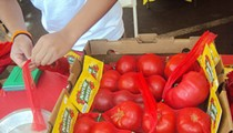 The Homegrown Tomato Challenge is Back!