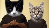 Meow the Jewels Reaches Kickstarter Goal, World Isn't So Bad After All