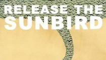 Release the Sunbird, Joss Stone, Little Dragon: This Week's New Releases