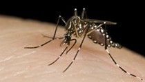 West Nile Virus Found in St. Louis Area Mosquitoes