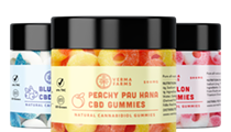 The Best CBD Gummies On The Market Today