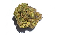 Dispensary Review: Tommy Chims Smokes N'Bliss Cannabis' Weed