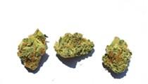 Best Cannabis Strain (Sativa)