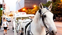 MTC No Longer Regulates Horse-Drawn Carriages; Animal Activists Cry Foul