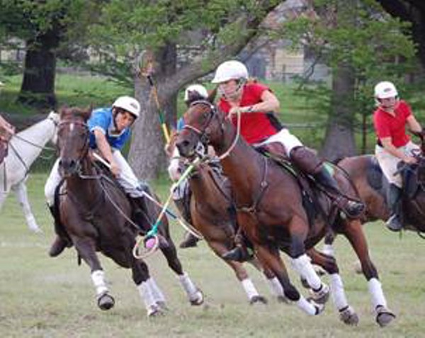 Polocrosse Ridiculous Sport Of The Idle Rich Headed To St