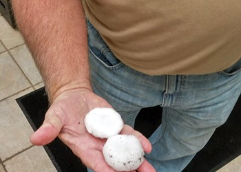 Crazy Golf-Ball-Size Hail Pummels Far West St. Louis County