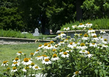 Bellefontaine Cemetery Wants to Bury You in Its Garden