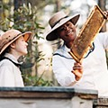 Buzz Kill: <i>The Secret Life of Bees</i> is all honey, no sting