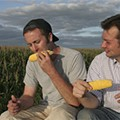 Corn Circles