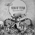 Head of Femur