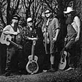 Hayseed Dixie