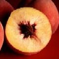 A Peach of A Day