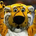 Tigers Attack!