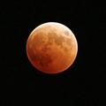 Moons, Mars & Amore