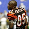 Chad Ocho Cinco: Would've Been Perfect Grand Marshal for St. Louis' May 8 Cinco de Mayo