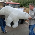 At Last, The Mystery of the Saint Louis Zoo Polar Bears Has Been Solved!