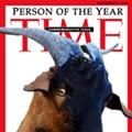 Meet the Mexico Goat, Missouri's Latest Animal Celebrity