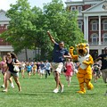 Buzzfeed's Mizzou Homecoming List Awakens the Tiger in All of Us