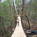 Aiiiiii! First St. Louis-Area Zipline to Open May 1