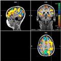 Mizzou Scientists Watch Memories Get Made