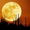 Supermoon Appears Saturday Night