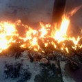 Michael Brown Memorial on Canfield Drive Burns to Ashes in Early Morning Blaze [UPDATE]