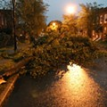 [PHOTOS] Storm Damage in South St. Louis