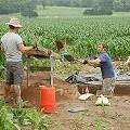 Vandals Destroy Archaeological Dig at Southern Illinois - Edwardsville