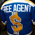 """""""I Bitched About It a Lot on Twitter"""" and Other NHL Lockout Coping Strategies of Blues Fans"""